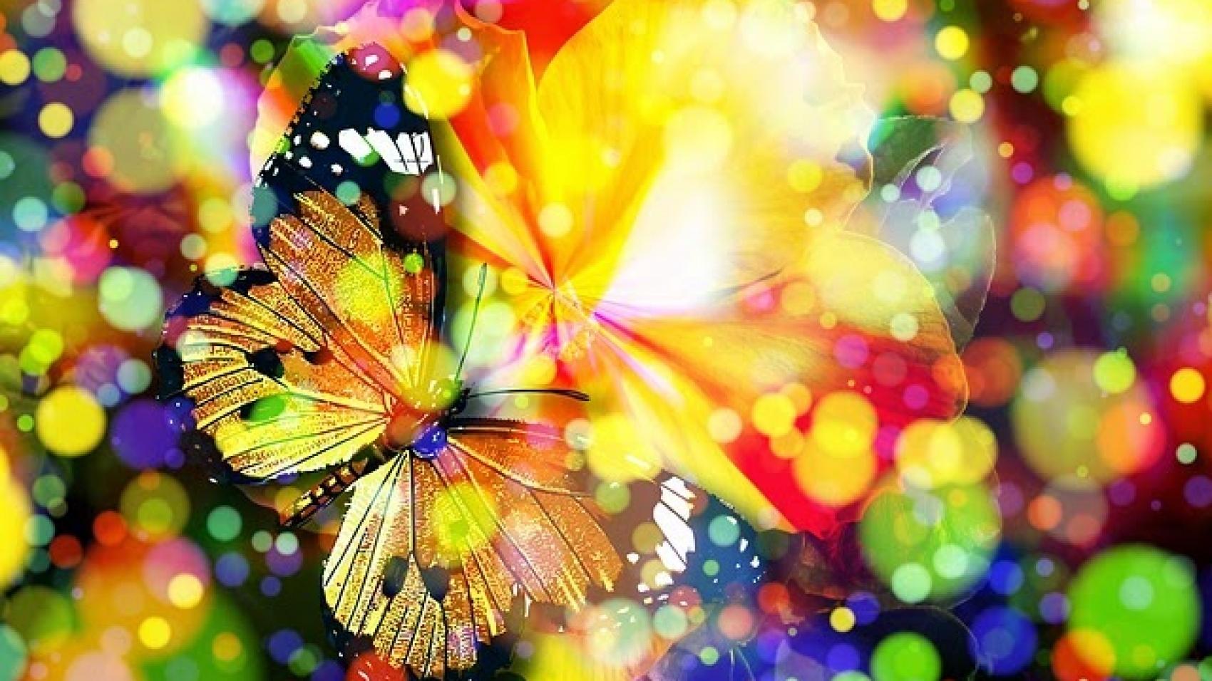mariposa-magica-colores-textura.jpg